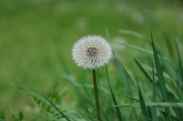 Mindfulness: tratamiento del Trastorno Obsesivo Compulsivo (TOC)