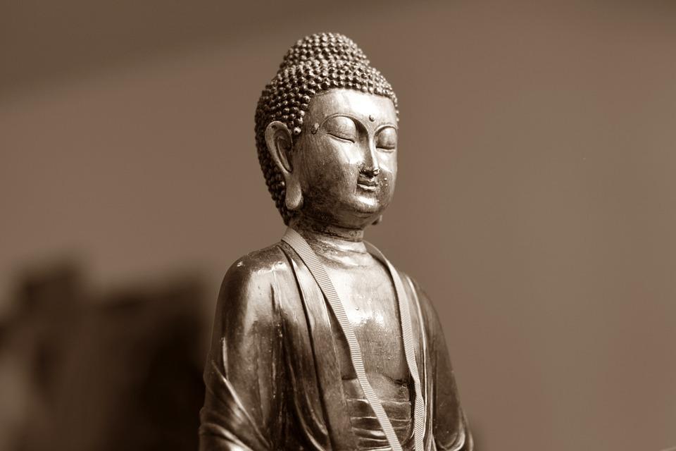"""""""El cerebro de Buda"""""""